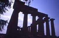 Tempio di Selinunte  - Selinunte (1484 clic)