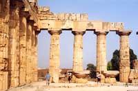 Tempio di Selinunte  - Selinunte (1855 clic)