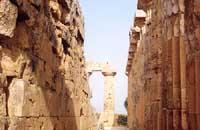 Tempio di Selinunte  - Selinunte (2049 clic)