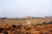 Tempio di Selinunte  - Selinunte (2055 clic)