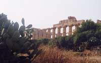 Tempio di Selinunte  - Selinunte (1856 clic)