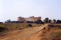 Tempio di Selinunte  - Selinunte (2014 clic)
