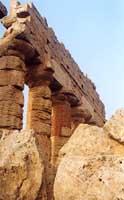 Tempio di Selinunte  - Selinunte (1955 clic)