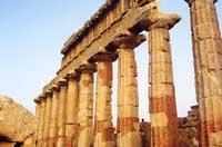 Tempio di Selinunte  - Selinunte (1538 clic)