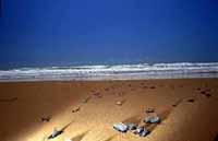 Spiaggia di Siculiana Marina  - Siculiana marina (7779 clic)