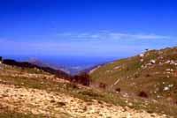 Petralia Sottana - portella colla (Purtedda a codda)  - Petralie (4196 clic)