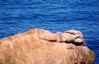 roccia sul mare di Cefalù  - Cefalù (3738 clic)